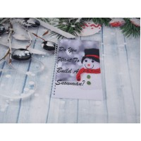 Do You Want To Build A Snowman Planner